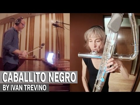 Caballito Negro: This Is Like Jazz! by Ivan Trevino