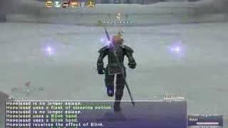 FFXI Dragoon Maat Fight