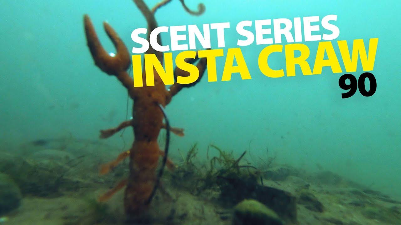 Spro Scent Series Insta Craw 6,5cm 10 Farben Dropshot Köder mit Aroma NEW OVP