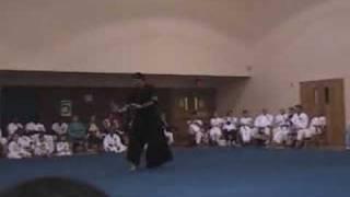 Soft Style Demo - Cuong Nhu Martial Arts