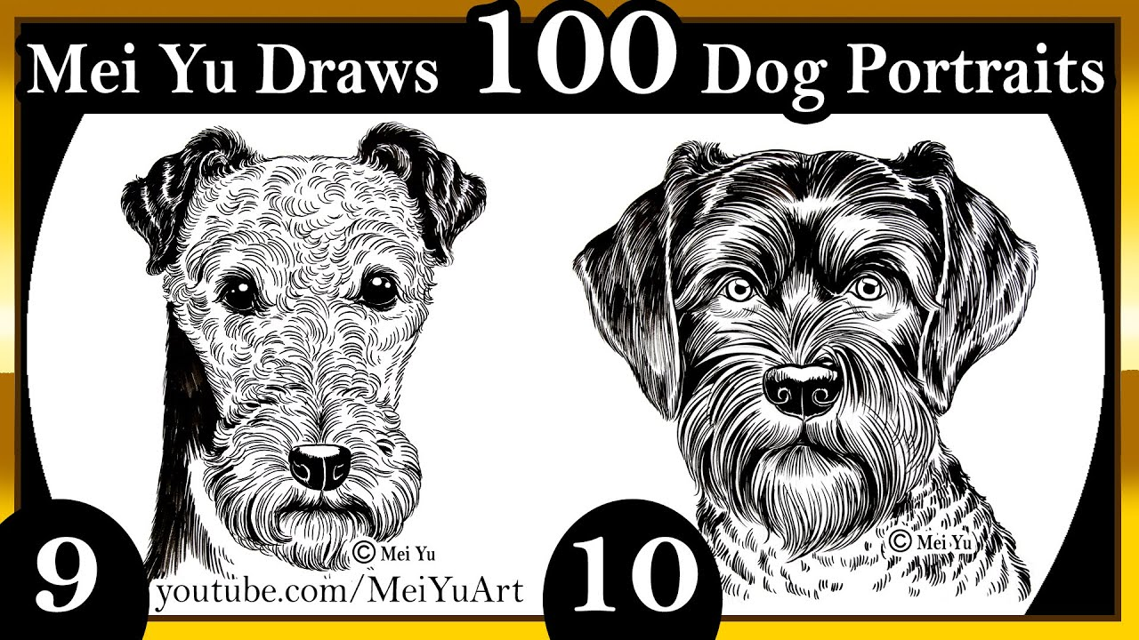 100 dogs drawings challenge mei yu draws 100 dog portraits 9 100 dogs drawings challenge mei yu draws 100 dog portraits 9 10 youtube ccuart Images