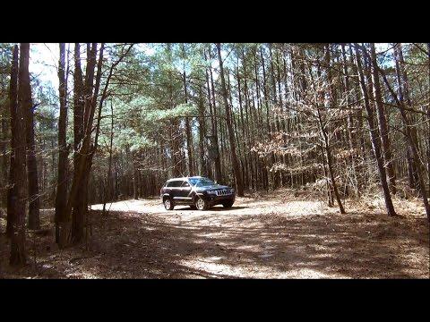 Lower Delaware Hunt Club Timbering
