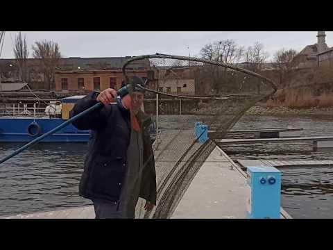 Рыбалка в Таганроге 2020.