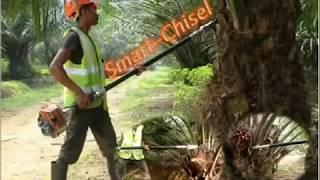 Video Mesin canggih untuk pemanen kelapa sawit download MP3, 3GP, MP4, WEBM, AVI, FLV Juli 2018