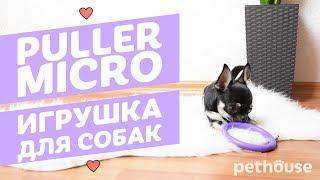 Puller Micro Тренировочный снаряд для собак карликовых и мини-пород   Обзор зоотоваров Pethouse.ua