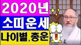[ 2020년 소띠운세] 숨만 쉬어도 대박터지는 소띠00년생/나이별 토정비결/ 신년운세!!