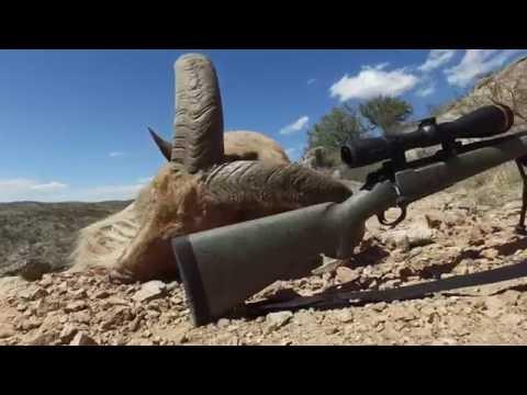 Leupold VX-6 Riflescope--Video Review