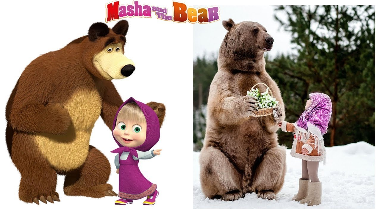 Download Masha and The Bear Characters in Real Life