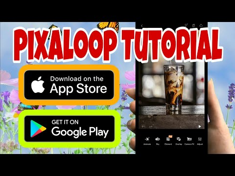 Pixaloop Tutorial- How To Create Moving Pictures