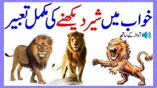 Khawab Ki Tabeer In Urdu Khawab Mein Sher Lion Dekhna Khawab Mein Sher(Lion)Dekhny Ki Tabeer