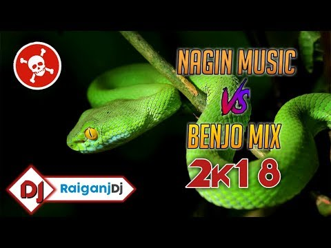 🐍 Hero Vs Nagin Matal Dance Mix | 🔥Nagin Music Vs Benjo Mix | Raiganj Dj 2k18 🎧