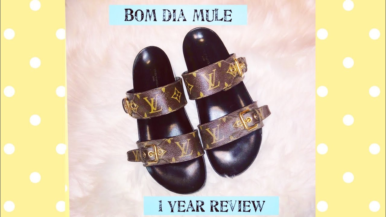 2756a8d10ab Louis Vuitton Bom Dia Mule One Year Review ( Wear , Pros and Cons , Is It  Worth It ? )