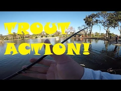 Finally Some TROUT FISHING At SANTEE LAKES