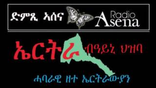 Voice of Assenna: Panel Discussion - What Went Wrong in Eritrea in the Last 25 Years? -  Part 4