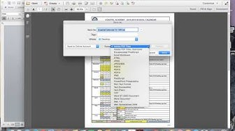 How to Convert and Insert a Multipage Pdf in to a Word Doc