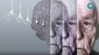 Нормално и патологично стареене на мозъка