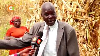 Many maize farmers yet to be paid