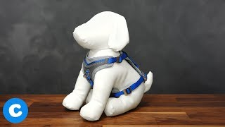 Kurgo Dog Harnesses
