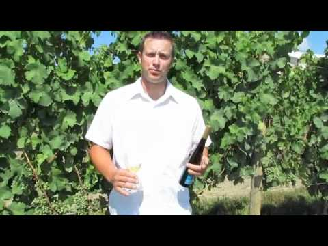 Peter Weis talks about Late Harvest Riesling