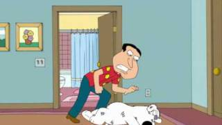 Family Guy - Quagmire Fighting with Brian