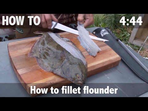 how-to-fillet-flounder