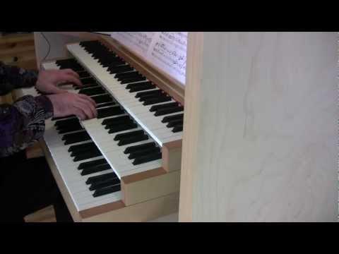 Wagner - Bridal chorus (marcia nuziale, wedding march, organ)