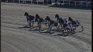 Vidéo de la course PMU PREMI FILEO