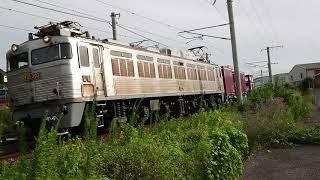 EF81-303 九州鉄道記念館 JR貨物展「機関車頑張る」特別展示による門司港留置線への回送