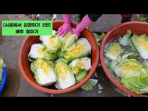 (시골에서 김장김치 하기 2편) 배추간편하게 절이는방법 Making Kimchi In The Country