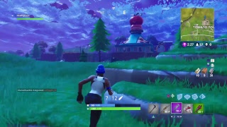 Top PS4 player  Fortnite battle Royale  800+Wins