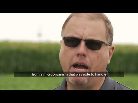 What is the difference between Roundup Ready 2 Yield® and Roundup Ready 2 Xtend® soybeans?