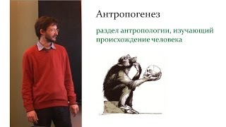 Антропогенез. Лекция С.В.  Дробышевского для старшеклассников