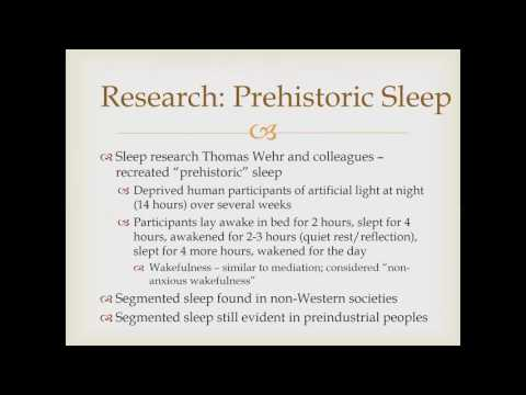 Historical Sleep Patterns in Humans (Sleep and Dreaming)