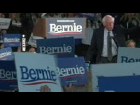How Bernie's Nevada Victory Led to Twitter Yelling at Chris ...