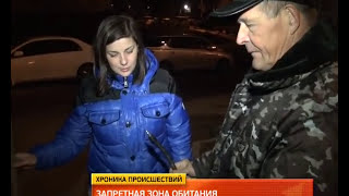 Бурого медведя застрелил снайпер в Хабаровске. MestoproTV
