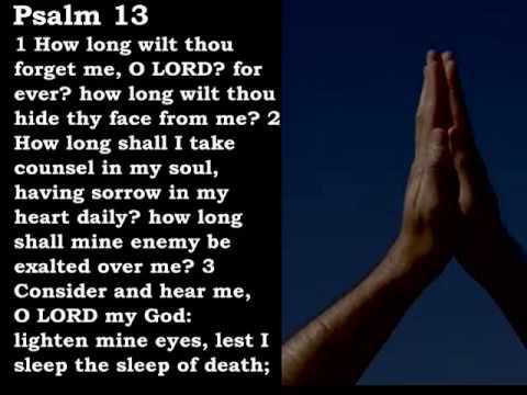 Bible Reading Psalm 13