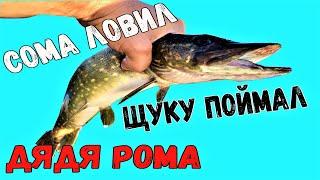 СОМА ЛОВИЛ ЩУКУ ПОЙМАЛ рыбалка с ночёвкой выход сома лето