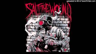 Salt The Wound - Better Than This (DEMO)