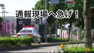 【愛知県警 岡崎署】210系クラウンパトカー高速緊急走行! thumbnail