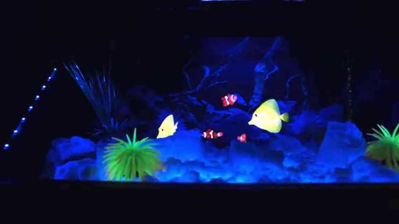 3d Aquarium Ohne Wasser Wartungsfrei E4100 Oh Youtube