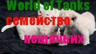 World of Tanks семейство кошачьих
