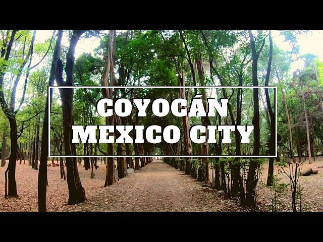 Coyoacan Mexico City