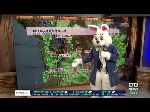 The Easter Bunny Does The Weather With MJ