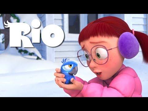 Linda Finds Blu  RIO 1080p