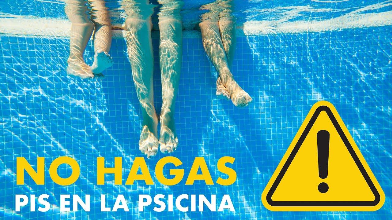 Orinar en la piscina es peligroso para tu salud youtube - Piscina dentro de la habitacion ...
