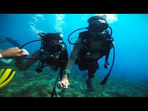 Scuba Dive San Andres Islas
