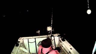 47lb Capitola White Sea Bass