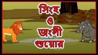 Yoobuv - সিংহ ও জংলী শুয়োর   Bangla Cartoon