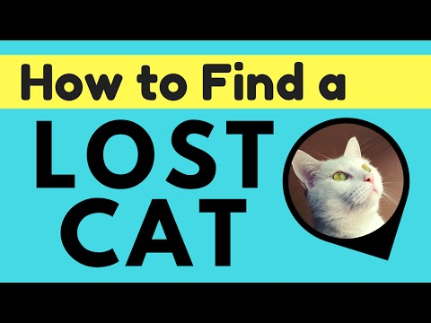 5 TIPS:  FIND YOUR LOST CAT | Pod GPS Tracker