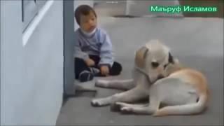 Смотрите на Доброту этой собаки к своему больному
